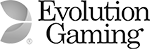 evolutiongaming logo